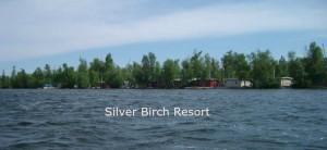silverbirchresort