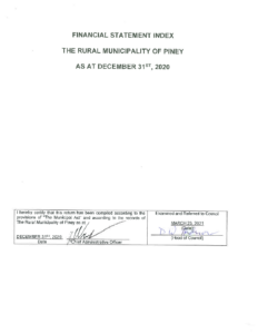 Financial Statement 2020-12-31